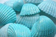 Paint seashells tiffany blue or any other color, (I happen to love cornflower or millstream blue).