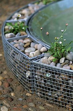 Stock Photo - Small gabion cages with pebbles surrounding a water feature and planted with daisies Bellis perennis Gabion Cages, Gabion Fence, Gabion Wall, Garden Crafts, Garden Projects, Garden Art, Back Gardens, Outdoor Gardens, Garden Edging