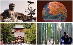 Kamakura, a city rich in culture and with beautiful natural surroundings, located just an hour away from Tokyo, is full of things to enjoy both seasonally and all year long. Here are 15 of the things that any visitor should enjoy in Kamakura.