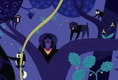 The Mandrill King - Alexander Vidal Illustration
