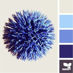 Thistle Blue Colors. A wide variation of blues with a deep purple creates a unique color scheme that would look great in any room in your home!