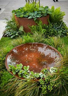Corten Steel waterbowls at RHS Chelsea Flower Show 2018 in London! A perfect water feature for the garden!Our Corten Steel waterbowls at RHS Chelsea Flower Show 2018 in London! A perfect water feature for the garden! Water Features In The Garden, Garden Features, Container Water Gardens, Container Gardening, Gardening Vegetables, Hydroponic Gardening, Garden Plants, Chelsea Flower Show 2018, Chelsea Garden