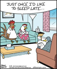 Off the Mark: Just once I'd like to sleep late. Funny Cartoons, Funny Comics, Funny Memes, Teacher Comics, Black Cat Appreciation Day, Sleep Late, Funny Comic Strips, Super Funny Quotes, Animal Quotes