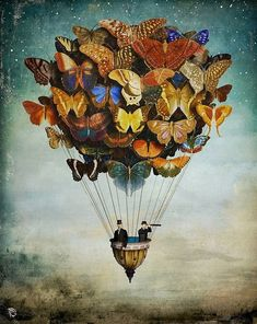 koncept: fairy flying a butterfly… is she hurt/injured that she cannot fly herself? Helping out theme.