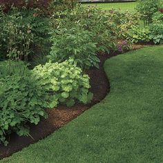 Landscape edging constructs the framework of your garden. Garden Edging may be pretty costly, and definitely so if you are going to employ bricks to edge your lawn. Garden Shrubs, Flower Beds, Flower Garden Borders, Garden Design, Garden, Flower Bed Borders, Garden Beds, Garden Edging, Fine Gardening