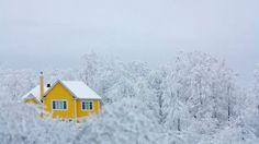 Nel bosco o sul ghiacciaio La casa è in mezzo al nulla