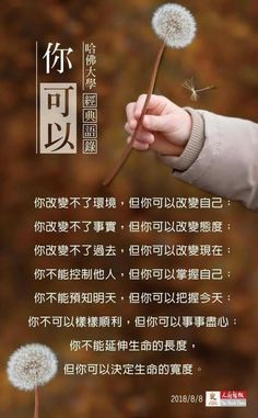 Chinese Phrases, Chinese Quotes, Good Morning Picture, Morning Pictures, Motivational Quotes, Inspirational Quotes, Healing Scriptures, Life Quotes, Study