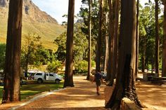 The 23 Best Camping Sites in the Western Cape 2019 Camping Spots, Campsite, Cape Town, Westerns, Tent, Country Roads, Nature, Camping, Store