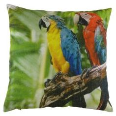 Buy Carnival Parrot Cushion from our Cushions range - Tesco.com