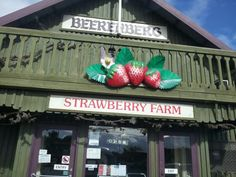 Beerenburg Handhorf Adelaide Hills Strawberry Farm, Strawberry Fields, Adelaide South Australia, Kangaroo Island, Easy Day, Australia Living, Short Trip, New Zealand, Gem