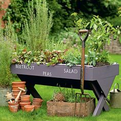 If you want to make your garden a bit more about sustainability, but don't really have space (or the funds) to plant a full-scale veggie patch, why not try a neat vegetable trug instead?  Give it a little personalised paint job, plant out your vegetables and see your garden discover a whole new lease of life all year round.