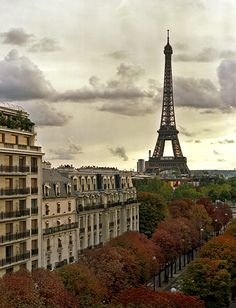 The Eiffel Tower - it's on my bucket list to eat in the restaurant in the tower with Ryan. I'd give anything to go back to Paris! Oh The Places You'll Go, Places To Travel, Places To Visit, Tour Eiffel, Monuments, France Eiffel Tower, Paris Travel, Paris France, Paris Paris
