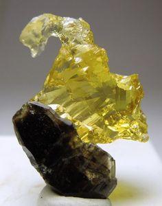 Берилл гелиодор (растворенный кристалл) на дымчатом кварце