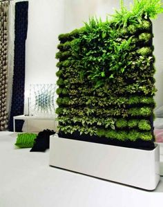 With the increase in the trend of vertical garden in home decoration, moss wall art and graffiti are also favored. Vertical gardens & moss walls are the best home decoration trick to turn out your home into a miniature farm. Sliding Room Dividers, Diy Room Divider, Wall Dividers, Space Dividers, Divider Ideas, Garden Dividers, Divider Design, Vertical Garden Design, Vertical Gardens