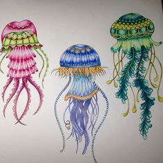 Johanna Basford | Picture by cilly | Colouring Gallery Faber Castell Polychromos