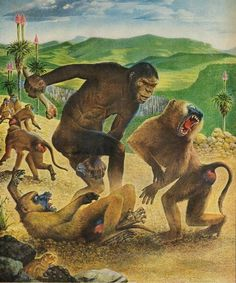 Australopithecus attacking a herd of baboons by Rudolf Freund