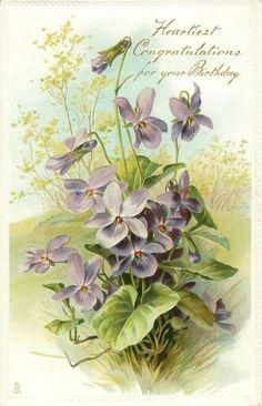 Violets, 1910