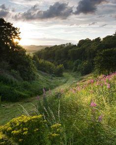 wanderthewood: Yorkshire Wolds, England by Paul Moon (Source: beautifulbritishisles, via wooden-folks)