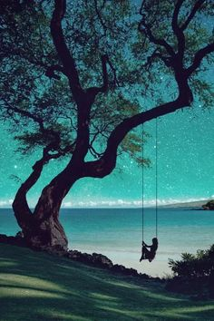 Implícito: En esta foto podemos ver un gran árbol con un columpio , una mujer columpiarse y en frente de ella un mar con un cielo totalmente azul aguamarina ,  lleno de estrellas  , nubes, una pequeña montaña , arena y arbustos .  Explicito: Esta imagen transmite  la tranquilidad que genera el estar columpiándose y escuchando el sonido del mar  al mismo tiempo