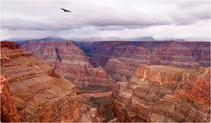 Grand Canyon Skywalk - Walk the sky 4000 feet above the Grand Canyon floor. Visit the glass bridge walkway at the Grand Canyon West Rim. Grand Canyon West Rim, Grand Canyon Tours, Oh The Places You'll Go, Places To Travel, Places To Visit, Grand Cayon, Sky Bridge, Glass Bridge, Visiting The Grand Canyon