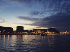 View of Buda from a boat cruise #budapest #hungary #danube by pearlscapephotography