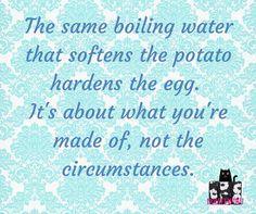 I love this quote! So true!