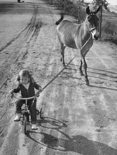 Photographic Print: Little Girl Riding Her Tricycle, Leading Francis the Mule by Allan Grant : Animals For Kids, Animals And Pets, Cute Animals, Horse Love, Tricycle, Vintage Photographs, Beautiful Horses, Old Photos, Little Girls