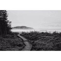 "Postmark Brewing on Instagram: ""#SevenDayWeekend photo otw: @kalebamccblackandwhite Location: Cape Scott, BC #postmarkbrewing #explore #Vancouver #westcoast #coastallife…"" West Coast, Vancouver, Brewing, Cape, Country Roads, Explore, Instagram, Mantle, Cabo"