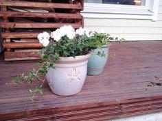 Kevään ensimmäiset istutukset :)  Valkoisia neilikoita, pientä murattia ja valkoisia orvokkeja :)
