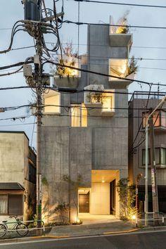 architecture tree-ness house akihisa hirata tokyo japan
