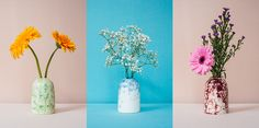 Miss Vases by Amber Rep