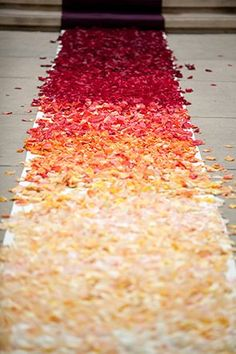ombre petals for the wedding aisle