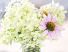 pink cone flower and lime green hydrangea