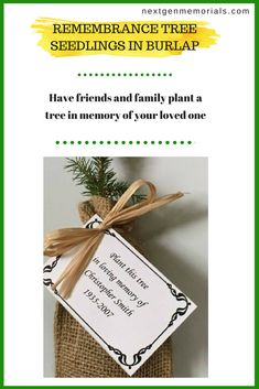 Remembrance Trees - Live evergreen sympathy tree seedling funeral favors in burlap for memorial gifts. Environmental and personalized memorial tree.