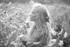 wind swept daydreams