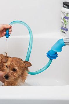 Rinseroo Slip-On Shower Hose & Pet Sprayer Bambi Disney, Jack Russell Terrier, Cleaning Painted Walls, Shower Hose, Dog Care, Dog Grooming, Pets, Dog Treats, Dog Mom