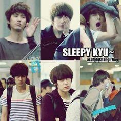 sleepy kyuhyun super junior shall i help you sleep cute maknae ; Kim Ryeowook, Cho Kyuhyun, Siwon, Leeteuk, Tvxq, Btob, Super Junior Funny, Korean K Pop, K Pop Star
