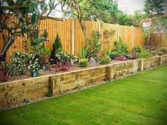 easy garden ideas along fence line - Google Search