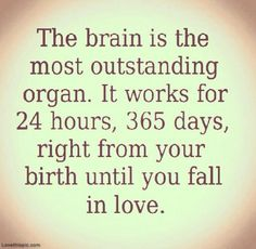 The Brain love days in love fall brain instagram birth life quotes love quotes funny quotes works outstanding organ hours