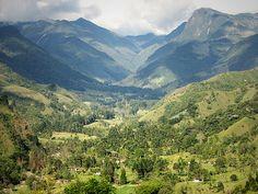 El Valle de Cócora es una área natural localizada en una planicie de la Cordillera Central de los Andes colombianos, mas exactamente en Quindío, Colombia y la cual pertenece al Parque Nacional Natural Los Nevados.