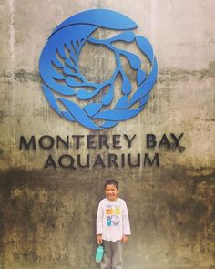 Fun day with this little guy and good friends. Gotta saying doing the #montereybayaquarium by myself was crazy.. thanks @wheresvero for always running around after this crazy kid #aquarium #monterey #montereybay #californiakids #montereybaylocals - posted by Carlos Jorge Miranda https://www.instagram.com/carlos_de_la_mission - See more of Monterey Bay at http://montereybaylocals.com