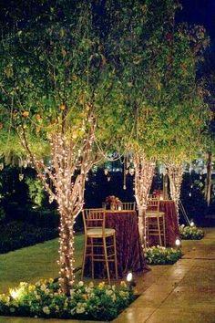 Beautiful backyard Lights