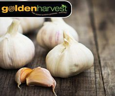Garlic is one of the most popular herbs. This post discusses 19 Health Benefits of Garlic. Using garlic daily is a great way to obtain the health benefits of this herb. Natural Cold Remedies, Cold Home Remedies, Herbal Remedies, Health Remedies, Fresh Garlic, Fresh Herbs, Grow Garlic, Use Of Garlic, Preserving Garlic
