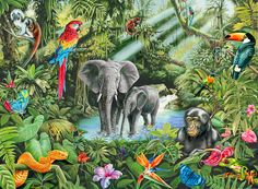 Science Discover Exciting Jungle Mural Wallpaper Design Ideas For Kids Room Deco Jungle Jungle Art Rainforest Animals Jungle Animals Jungle Drawing Jungle Bedroom African Jungle Mosaic Crosses Jungles Deco Jungle, Jungle Art, Rainforest Animals, Jungle Animals, Jungle Drawing, African Jungle, Jungle Flowers, Wildlife Art, Photo Wallpaper