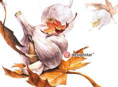 Art Sketches, Art Drawings, Composition Art, 2d Design, Korean Artist, Natural Forms, Food Illustrations, Watercolour Painting, Food Art