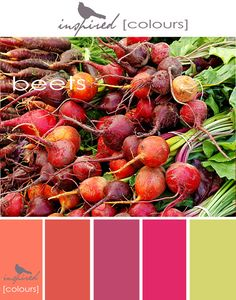 Inspired Colors - Beets, via Flickr. #palettes #paint