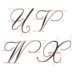 U-X flourished Copperplate with vector points. Copperplate Calligraphy, Calligraphy Doodles, Calligraphy Practice, How To Write Calligraphy, Caligraphy Alphabet, Hand Lettering Alphabet, Script Lettering, Graffiti Lettering, Creative Lettering