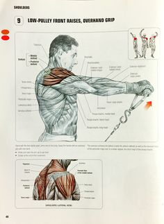 Overhand Low-Pulley Front Raises