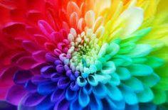 colors - Buscar con Google