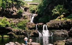 A popular attraction for tourists staying at Maui hotels and resorts, the Road to Hana is a beautiful drive featuring stunning sightseeing opportunities, including waterfalls, exotic wildlife, and great ocean views.
